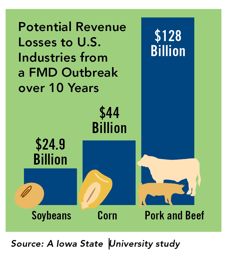 secure pork fmd graphic